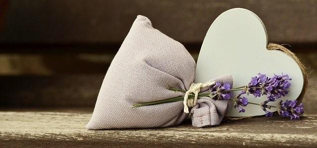 lavender 823600 640